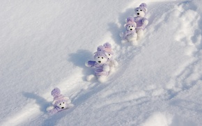 Picture winter, snow, strips, clothing, toys, sparks, the snow, shadows, white, bears, cap, sweater, majvieta, playboy
