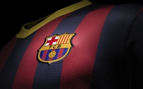 Wallpaper A new form, Football, Fc Barcelona, New Kit, Football, FC Barcelona, 2013/14, Leopard, Club, Barca