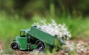 Wallpaper nature, dandelions, toy, truck