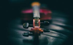 Picture music, violin, instrument