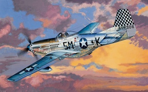 Picture aviation, Mustang, Mustang, fighter, the plane, American, F-6D