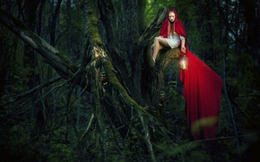 Picture forest, girl, tree, art, red coat