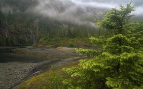 Picture fog, river, Alaska
