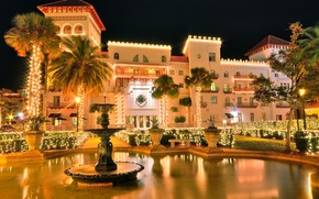 Picture light, lights, palm trees, Palace, fountain, mansion