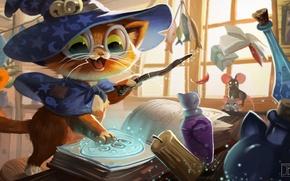 Picture cat, art, the wizard, children's, Julia Blattman