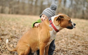 Wallpaper dog, child, widescreen, friend, HD wallpapers, Wallpaper, mood, full screen, background, fullscreen, hugs, boy, joy, ...