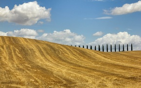 Picture field, autumn, trees, hills, Italy, Tuscany