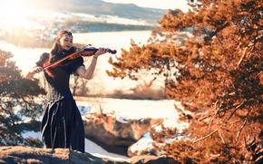 Picture girl, the sun, violin, dress, Miss Froggi