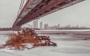 Picture winter, grass, bridge, ice, Dnepr, Kiev, podmiotom