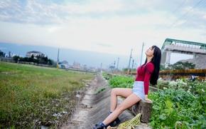 Picture field, mood, asian, oriental
