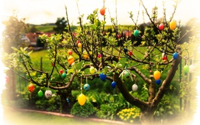 Picture leaves, branches, eggs, Easter, Easter