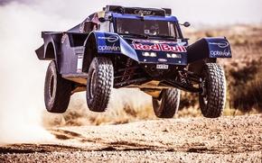 Picture Sport, Machine, Speed, Race, Red Bull, Rally, Dakar, Buggy, Flies
