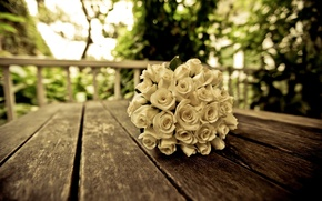 Picture white, flower, leaves, flowers, background, tree, widescreen, Wallpaper, rose, roses, bouquet, blur, beautiful, wallpaper, flowers, ...
