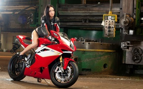 Picture red, pose, plant, motorcycle, red, bike, Supersport, motorcycle, machine, plant, pose, sportbike, MV Agusta F4