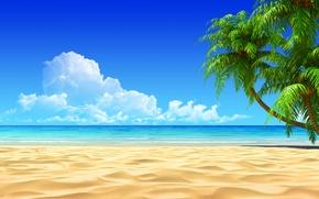 Picture beach, tropics, the ocean, exotic