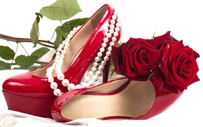 Picture flower, flowers, red, romance, shoes, roses, pearl, red, rose, sexy, flower, sexuality, flowers, shoes, roses, …