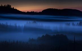 Wallpaper field, landscape, night, fog