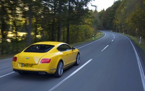 Picture Bentley, Continental, Road, Yellow, Forest, Continental, Suite, In Motion