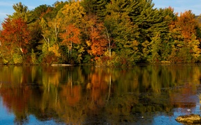 Picture autumn, forest, the sky, water, trees, lake, river