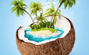 Picture sea, the sky, clouds, palm trees, island, coconut