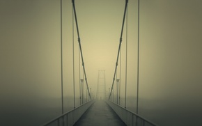 Picture road, bridge, fog