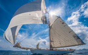 Picture landscape, the ocean, ship, sails