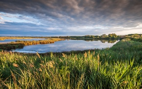 Picture the sky, grass, clouds, landscape, nature, lake, France, Petite Camargue