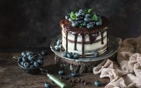 Wallpaper blueberries, chocolate, cake