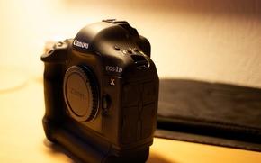 Wallpaper macro, background, Canon 1DX