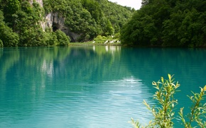 Picture greens, water, landscape, nature, lake