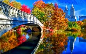 Picture autumn, the sky, leaves, trees, landscape, bridge, New York, USA, Central Park