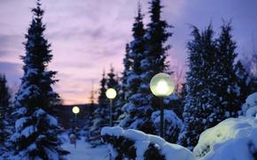 Wallpaper winter, light, snow, nature, the evening, lights