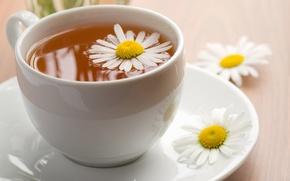 Wallpaper Daisy, gently, tea