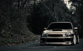 Picture road, widescreen, road, subaru, forest, Subaru, photo machines, wrx cars, beautiful cars