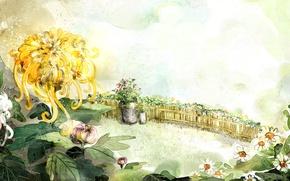 Wallpaper flowers, figure, the fence, chamomile, bucket, chrysanthemum