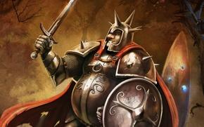 Picture sword, warrior, shield, art, Trine 2, Pontius, Pontius