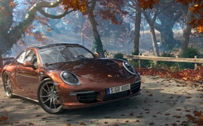 Picture road, machine, autumn, leaves, trees, art, Cayman, Porsche, Porshe
