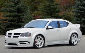 Picture auto, Dodge-Avenger 2007, autumn, forest, Road