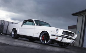 Picture Mustang, Ford, 1965, Fastback, Wheels, RB3C, Forgeline