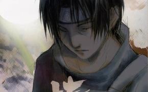 Picture sad, closed eyes, Naruto Shippuden, Naruto shippuuden, Yatai Senjyo, itachi Uchiha, ANBU, bandage on forehead, …