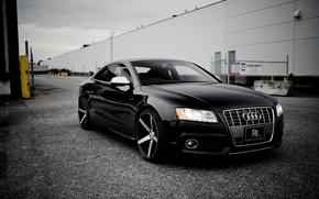 Picture Audi, Audi, coupe, Coupe