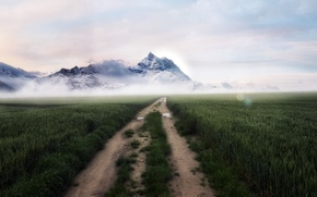 Picture road, field, mountains, fog