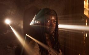 Picture Danai Gurira, promo, The Walking Dead, the fifth season, Michonne