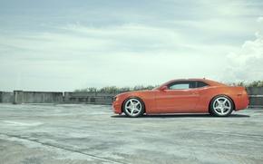 Picture camaro, orange, Camaro