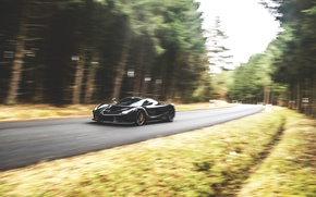 Picture Ferrari, LaFerrari, moving, GFWilliams Photographer