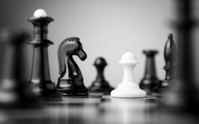Picture white, black, Chess, chess board