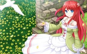 Picture girl, flowers, bird, petals, anime, art, Re: Zero kara hajime chip isek or Seikatsu, Thearesia …