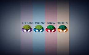 Picture heroes, Rafael, Donatello, Michelangelo, teenage mutant ninja turtles, Raphael, Leonardo, Michelangelo, donatello, Leonardo, teenage mutant …