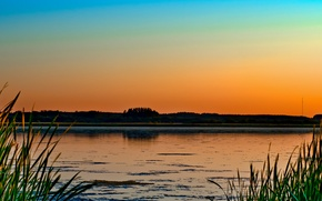 Picture lake, the evening, nature, trees, grass, swamp, sunset