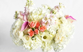 Picture flowers, roses, bouquet, rose, flowers, bouquet